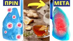 1 Κούπα... Οι Πνεύμονες & Το Αναπνευστικό Σύστημα Θα Τη Λατρέψουν! Greek Sweets, Health Fitness, Medical, Youtube, Medicine, Med School, Fitness, Youtubers, Youtube Movies