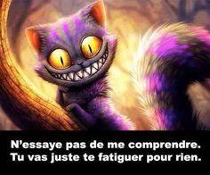 N'essaye pas de me comprendre. Tu vas juste te fatiguer pour rien #citationsmarrantes chats alice au pays des merveilles sourire comprendre reproche