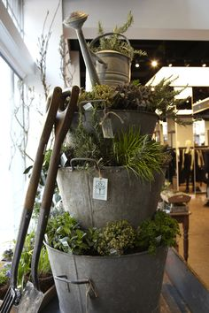 Regent Street London shop COS - delightful pop-up Clifton Nurseries shop that was residing in the window.