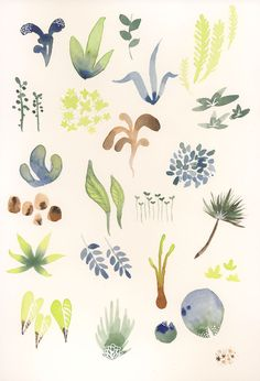 watercolor doodles - Google Search
