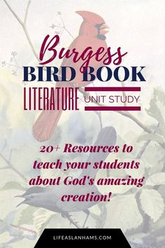 Bird Unit Study Based On The Burgess Book