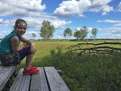 Ga jij met kinderen naar Nationaal Park Store Mosse in Zweden? Lees dan dit blog met onze tips en ervaringen voor het Naturum, wandelen en vogels spotten.