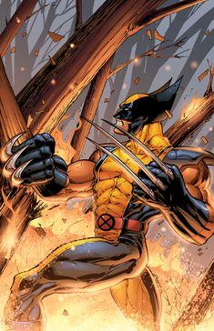 Wolverine by DashMartin on deviantART