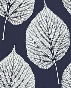 Leaf White / Midnight Blue wallpaper by Harlequin