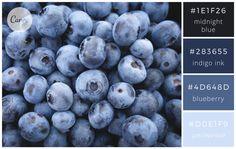 Berry Blues - Color makes a design come alive.