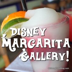 Disney World Margarita Gallery -- perfect for National Margarita Day today!! :-D