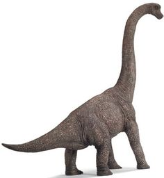 Just how big was the dinosaur Brachiosaurus
