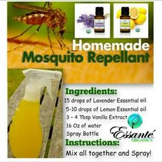 I am like a Mosquito magnet all year round, in this Florida weather. It limits my outside playtime . There's no fun in missing out on things:/ If you or your little ones have this same problem and you have been using products that you cant pronounce the ingredients  #toxicfreeingredients Here is a recipe that you can be confident in using everytime! #Essanteorganics #theorganiclivingcompany #lavenderoil #lemonoil #usdacertifiedorganic #essentialoils #toxicfree #chemicalfree…