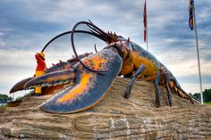 Shediac New Brunswick.if U love Lobster.they have the largest Giant Lobster, New Brunswick, Worlds Largest, The Good Place, Creatures, Canada, Fish, Spaces