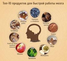 Топ-10 продуктов для быстрой работы мозга