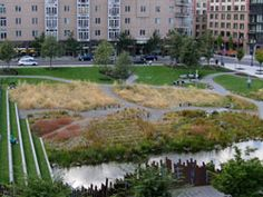 Tanner Springs Park.  Also along the streetcar line.  Something about this place is (usually) very peaceful.  The water.  The plants used in the landscaping.  A very strange cool fence.