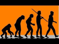 Neanderthal vs Homo Sapiens:  Who Would Win in a Fight?