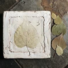Plaster cast leaf print handcrafted botanical decor kitchen wall art living room cottage style farmhouse country home gift for home Kitchen Wall Art, Kitchen Decor, Plaster Cast, Botanical Decor, Living Room Art, Leaf Prints, Cottage Style, Home Gifts, It Cast