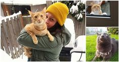 15 Scaredy Cats Who Just Went Outside For The First Time