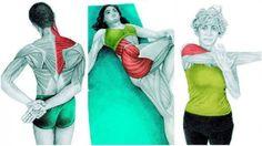 stretching: Zobacz jak 36 ćwiczeń wpływa na Twoje mięśnie