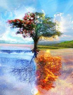 """Baum test     Zadání testu zní: """"Nakreslete libovolný nejehličnatý strom.""""     Test  kresby stromu tvoří doplňek grafologického rozboru. P..."""