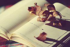 Autumn-book-copybook-heart-leaves-love-favim.com-76903_large