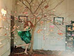 Ooh ! Un arbre à pâtisserie - Pastry Tree // Tim Walker Photography