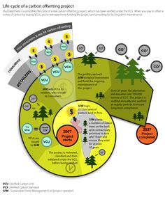 See the lifecycle of a carbon credit and how the consumers' dollars contribute.