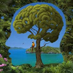 Nature by Igor Morski/summer Cool tree! Why does it look like a brain?