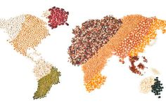 3 Ways We Can Feed Everyone On The Planet  http://www.rodalesorganiclife.com/home/3-ways-we-can-feed-everyone-planet