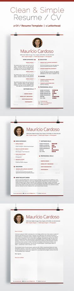CV example for an IT manager position CV examples Pinterest - cv examples