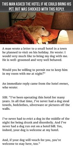 Do you bring your pet with you on vacations? Some folks find it is not worth the hassle, but others will go out of their way to find pet friendly establishments. In this story, this hotel goes out of their way to prove they are willing, no, eager, to have pets on as guests.  Share this with your fri…
