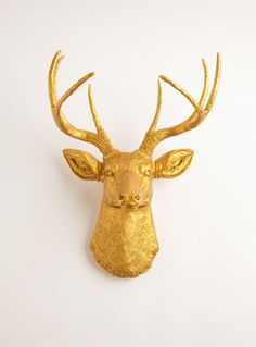 GOLD taxidermy. want. in my office. with a dark green velvet chesterfield and library of books