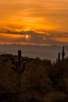 Sunset on South Mountain. Arizona Photographers - Google+ ... Where I spend Saturdays back in az. @Andrea Coffman