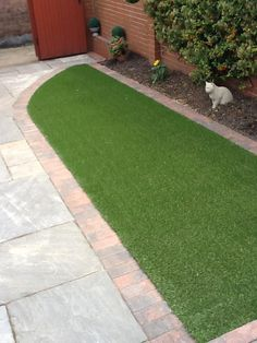 A quick lawn transformation In Grimsby