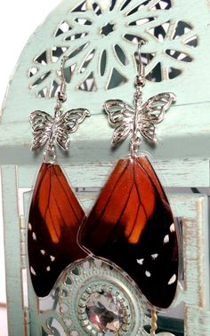 6f27ee48b Real Spotted Amazon Butterfly Wing Earring by OrganicoJewelry, $17.00