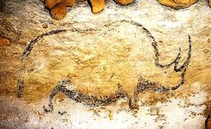 The cave of Rouffignac is unique in many ways. First, it is about three miles… Art Pariétal, Paleolithic Art, Stone Age Art, Art Rupestre, Lascaux, Tourist Info, Art Ancien, Dordogne, American Indian Art