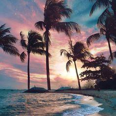 beach photography beach pictures beach outfit beach wedding beach quotes beach h. Sunset Wallpaper, Cute Wallpaper Backgrounds, Pretty Wallpapers, Nature Wallpaper, Phone Backgrounds, Tree Wallpaper, Iphone Wallpaper Beach, Couple Wallpaper, Wallpaper Wallpapers