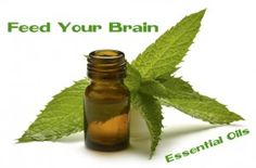 Lavender, sage, and peppermint Essential Oils Are Fighting Dementia - improve memory and increase mental clarity