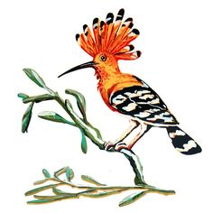 David Gerstein Signed Sculpture - Hoopoe Bird (Double Sided) | Judaica Web Store