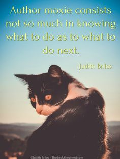 Judith Briles is a book publishing expert, self-publishing expert, indie publishing expert. She is a blunt, butt-kicking, benevolent book coach. Shepherd Book, Butt Kicks, Writer Quotes, Self Publishing, Authors, The Book, Cat Lovers, Indie, How To Plan