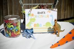 Adopt a Dino station at a Dino party. She had some way fun ideas.