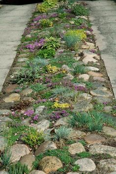 Garden Yard Ideas, Garden Paths, Garden Projects, Landscaping With Rocks, Front Yard Landscaping, Landscape Design, Garden Design, Scandinavian Garden, Dream Garden