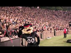 But we still stand up and roar | 45 Ways You Know You Went To The University Of Cincinnati