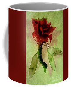 Flying Flower Of Cactus. Coffee Mug by Alexander Vinogradov.  Small (11 oz.)
