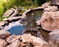 Despite New Mexico's reputation for warm temperatures and desert panoramas, we have some outstanding waters. Some of our favorites are the naturally heated mineral waters that bubble up at treasured s...