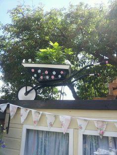 upcycled old wheelbarrow.