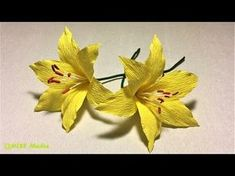 How To Make DIY Hibiscus crepe paper Flower tutorials/Hibiscus Flower origami-Craft Tutorial - YouTube