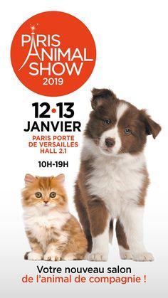Tous au salon Paris Animal Show ! Paris, Salons, Passion, Movie Posters, Animals, New Living Room, Pets, Animales, Montmartre Paris
