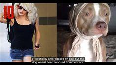 Video Unik - Gila! Orang-Orang Ini Bercinta Dengan Hewan, Mulai Dari Kucing Hingga Anjing