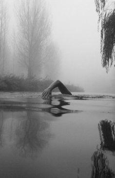 inspiration, swimming, lake