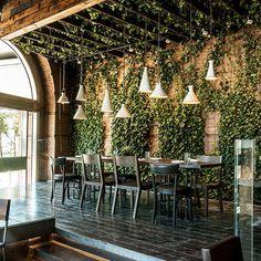 Where To Eat During Fashion Week - New York City Restaurants - Harper's BAZAAR