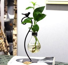 Turning Light Bulb Into Minimalist Vase - Unique Balcony & Garden Decoration and Easy DIY Ideas Light Bulb Vase, Light Bulb Crafts, Vertical Garden Wall, Wine Bottle Art, Diy Planters, Balcony Garden, Plant Holders, Vases Decor, Biscuit