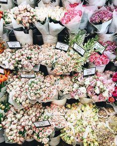 486 отметок «Нравится», 49 комментариев — kenny | wanderlust (@kehnnee) в Instagram: «Roses are not always red  wishing you a wonderful Sunday!  #flowershop #foreverfaffing…»