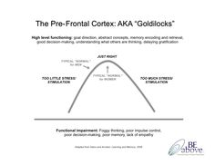 "Ann Betz ""Goldilocks"" Bell Curve for Pre-Frontal Cortex"
